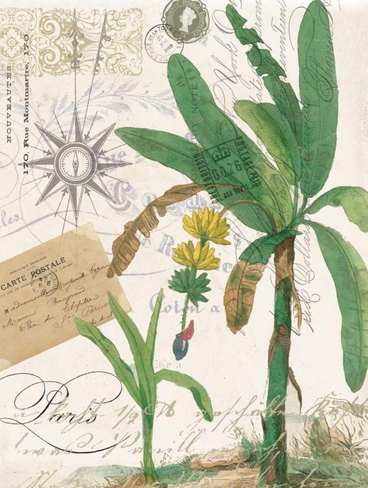 Palm Rectangle 2 Jordan, Elizabeth 139618
