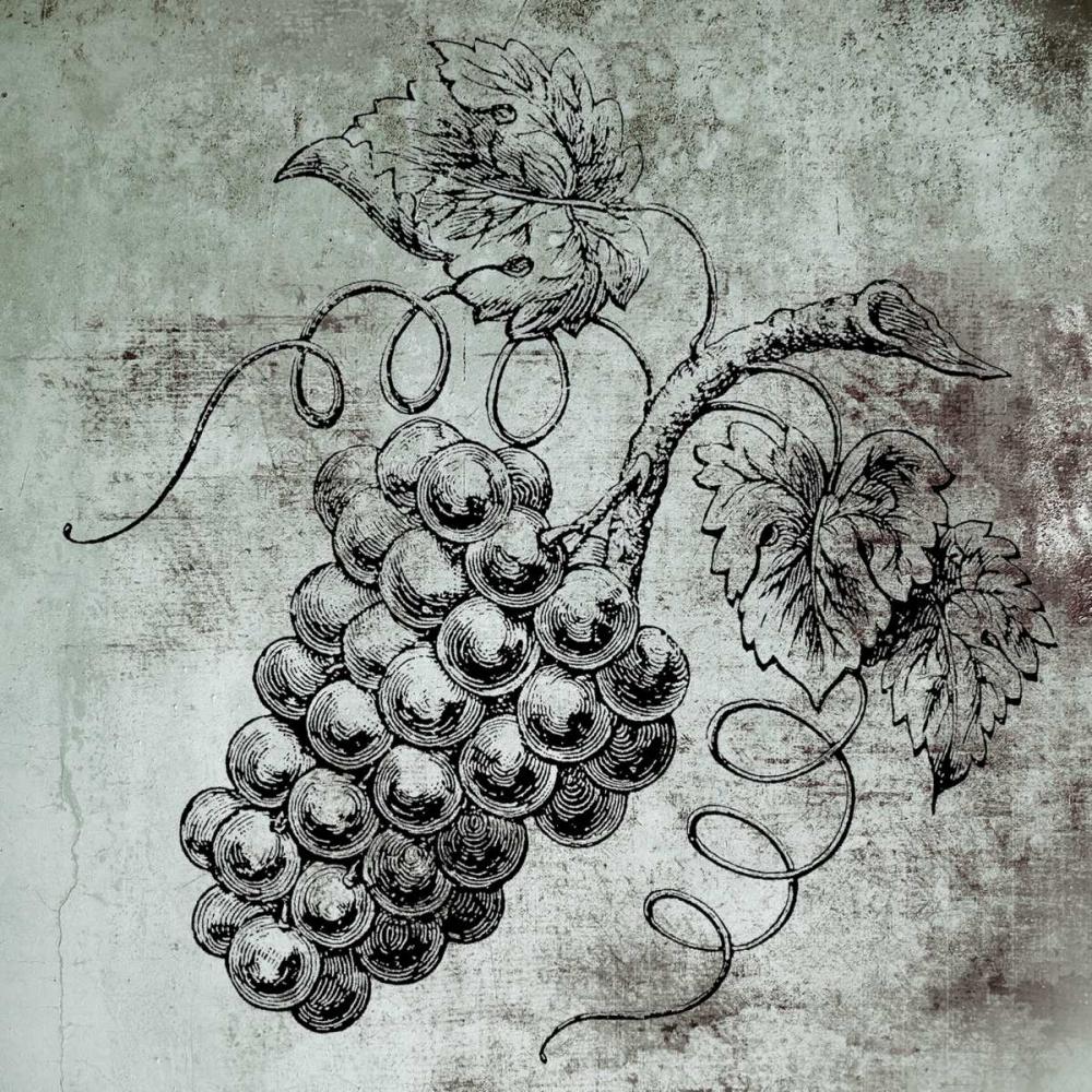 Vine Grapes Brown, Victoria 139673
