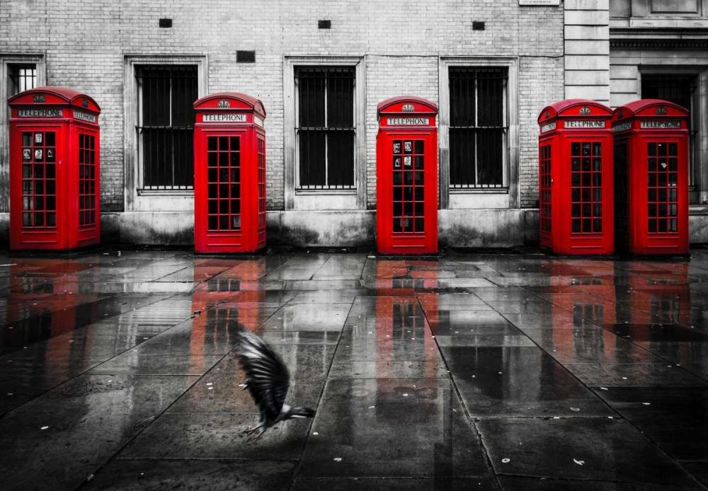 London Phone Booths Bird Brown,Victoria 138778
