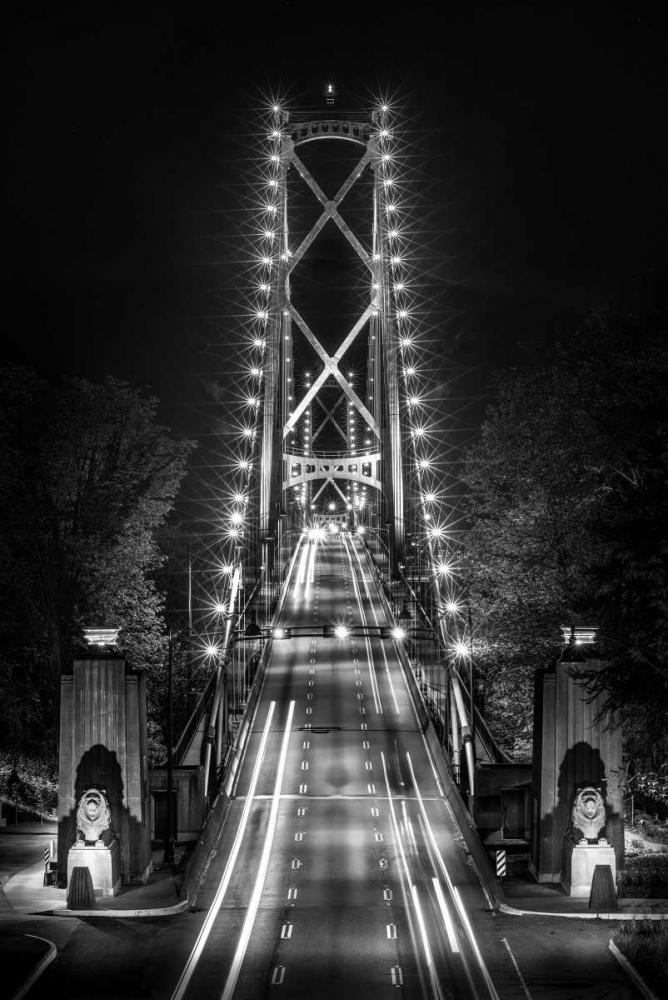 Liongate Bridge Kostka, Vladimir 153017