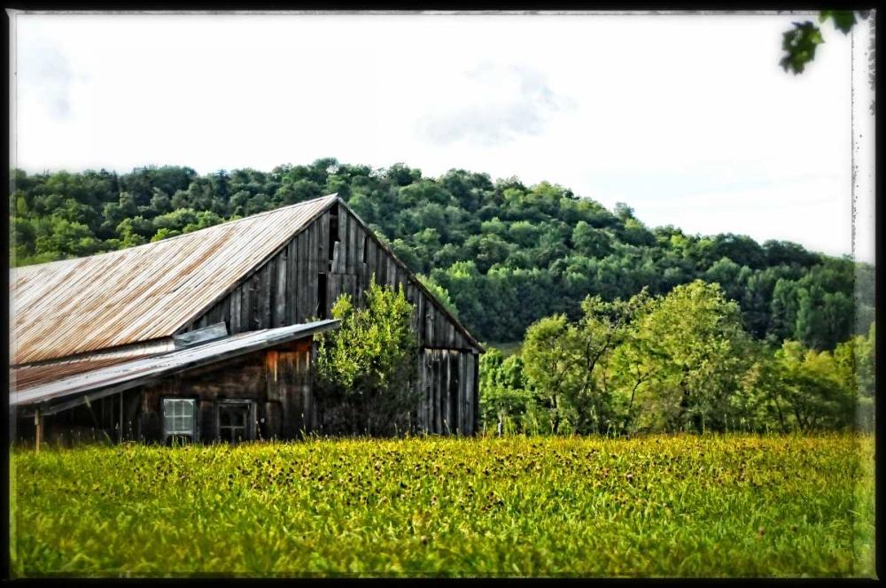 Country Barn 4 Foschino, Suzanne 153039