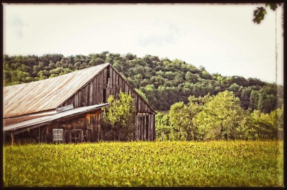 Country Barn 4 Vintage Foschino, Suzanne 153038