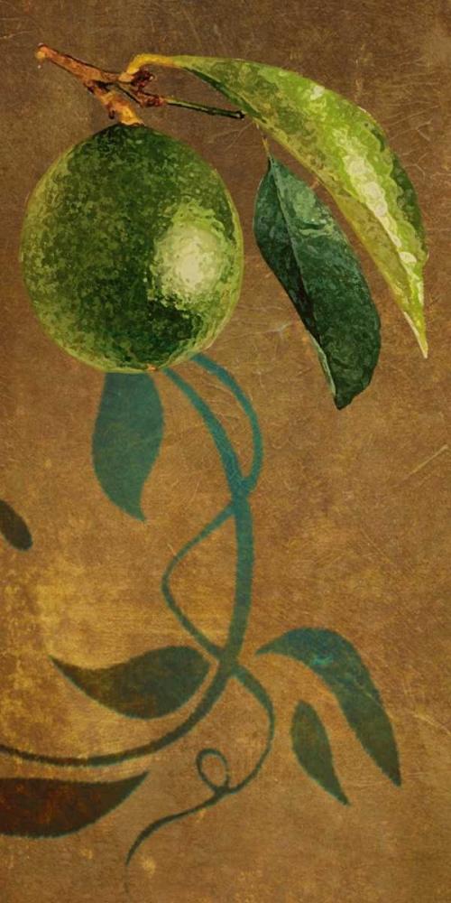 Lime I Butler, Steve 6951