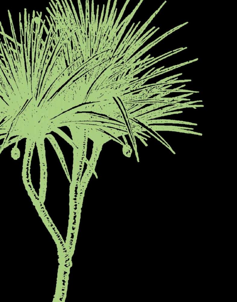 Brilliant Palm Detail IV Butler, Steve 6993