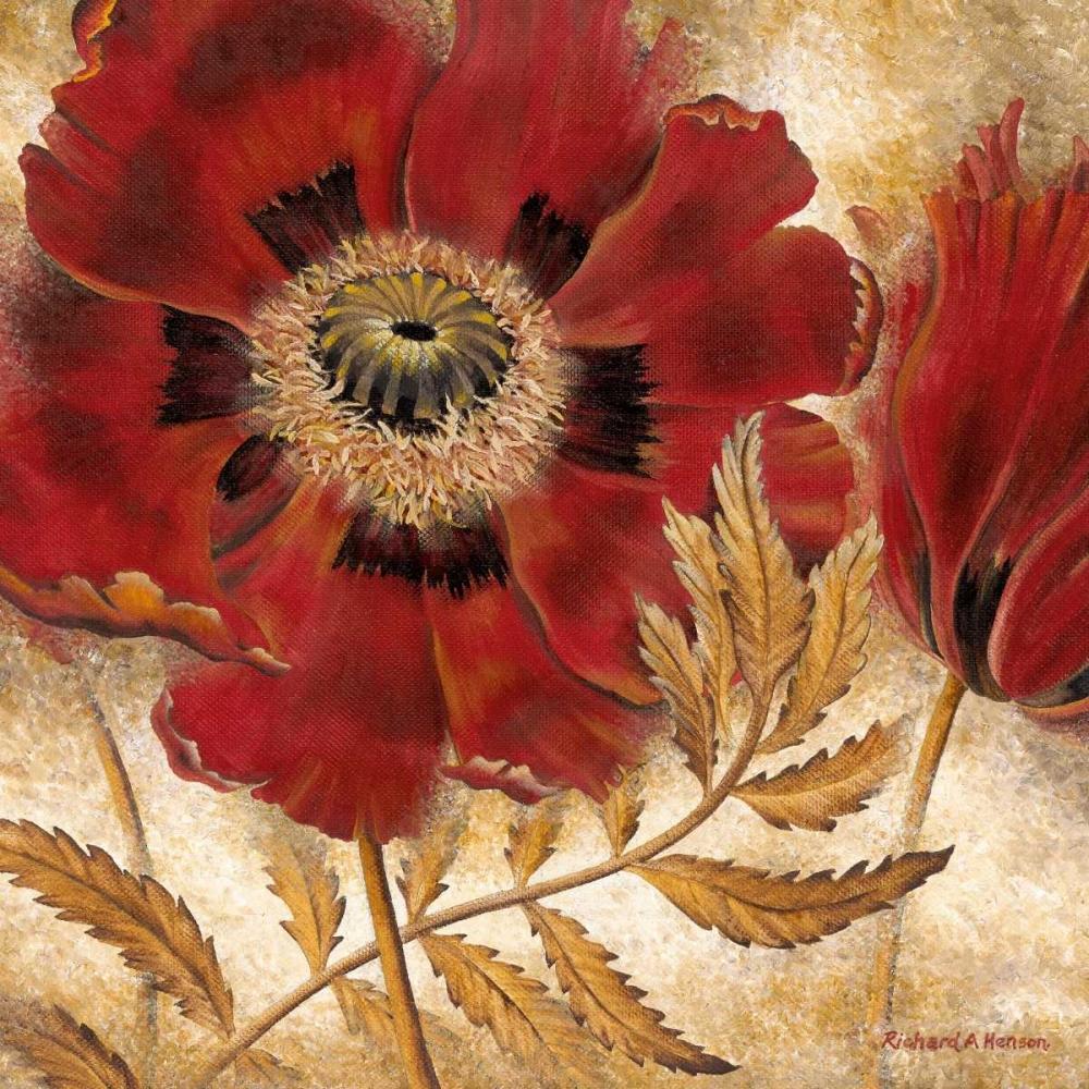 Red Poppy Henson, Richard 10337