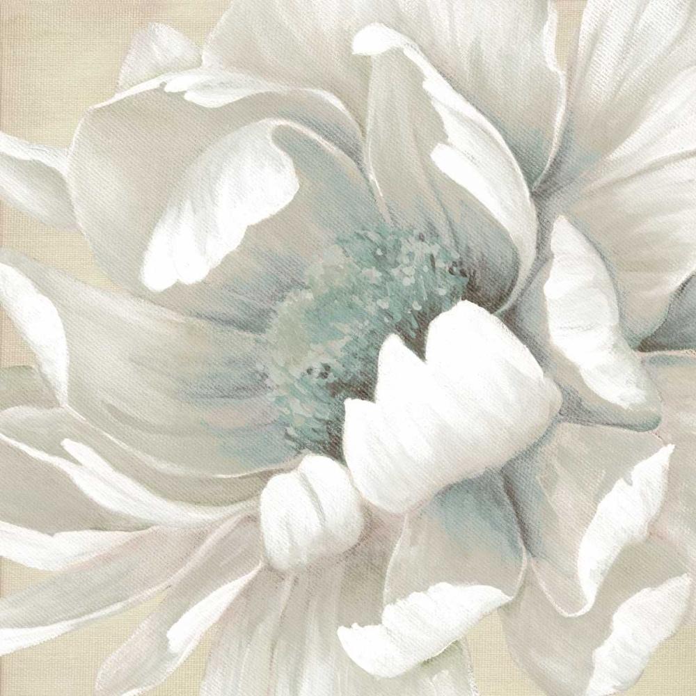 Winter Blooms II Robinson, Carol 55531