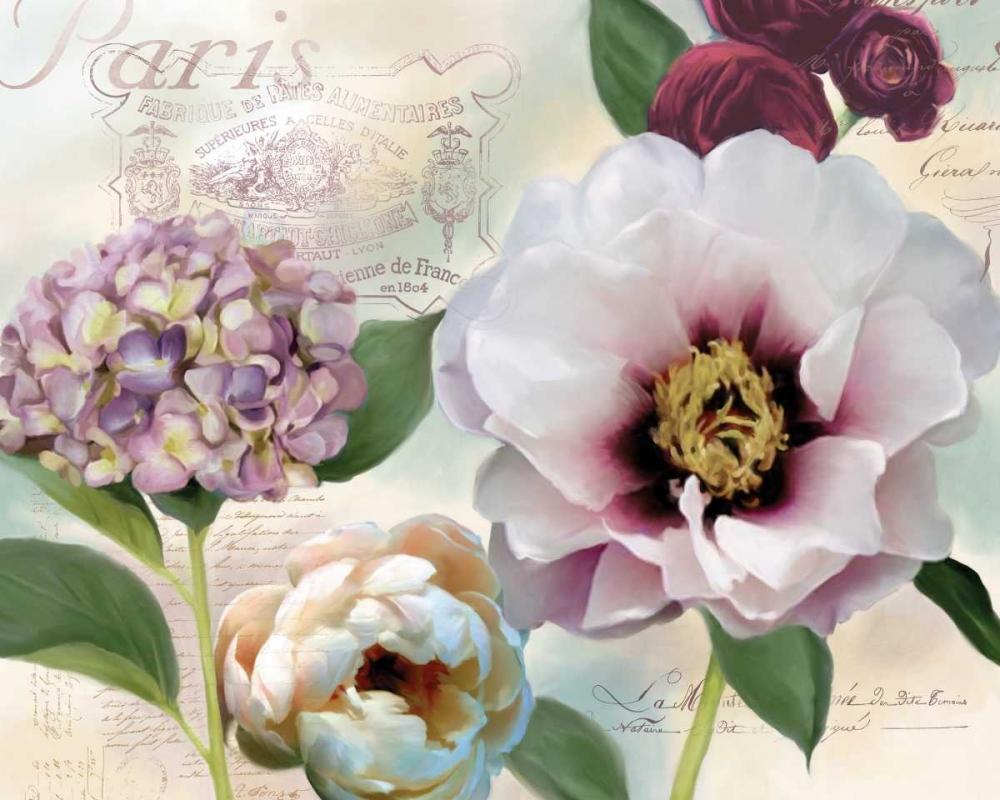 Soft Petals I Robinson, Carol 55570