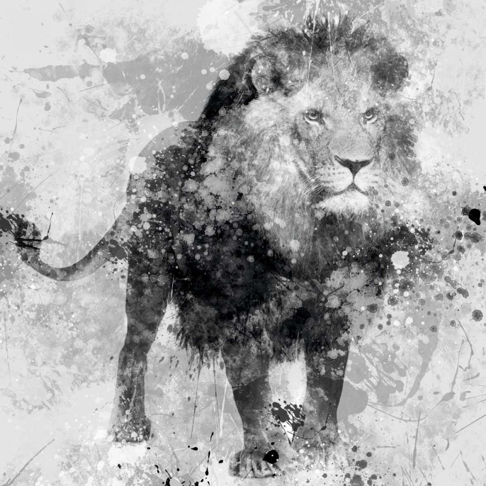 Lion Robinson, Carol 55422