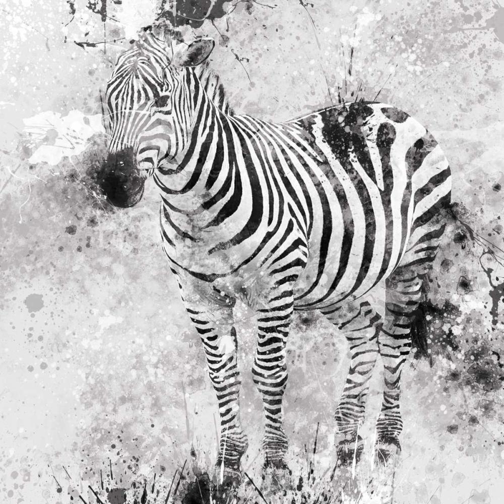 Zebra I Robinson, Carol 55424