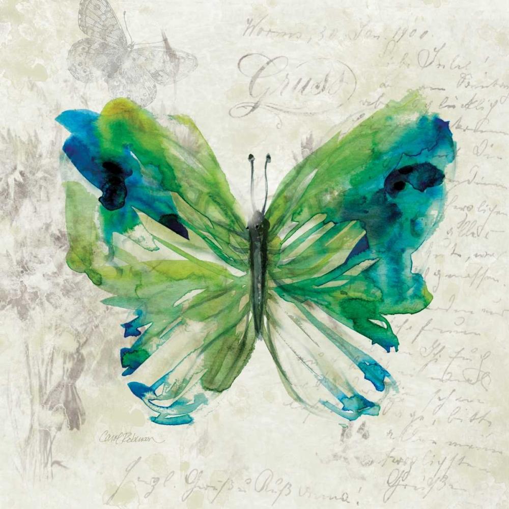 Butterfly Sketch I Robinson, Carol 124461