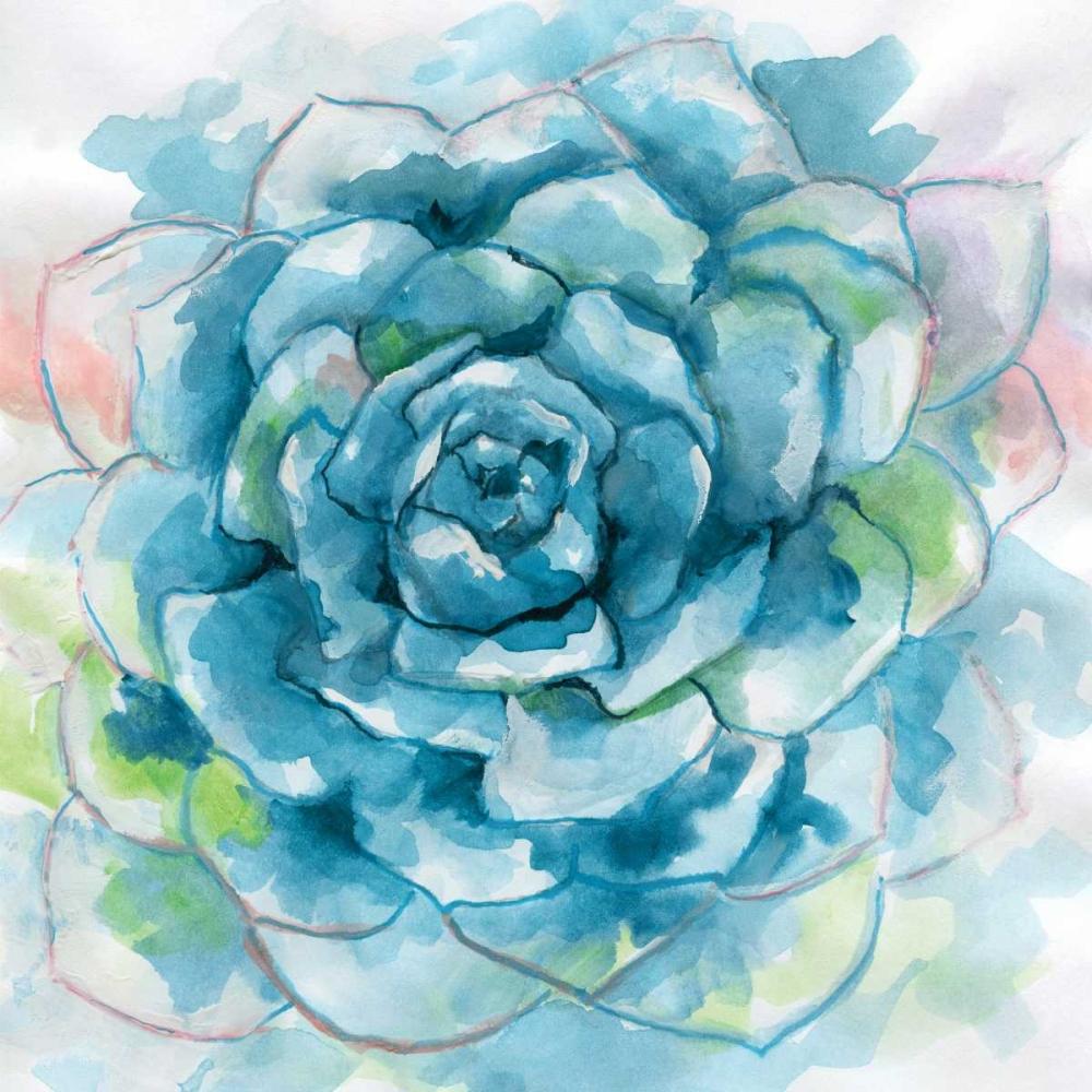 Succulent Bloom Nan 151126