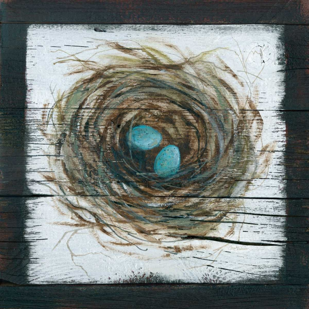 Stained Nest Robinson, Carol 124513