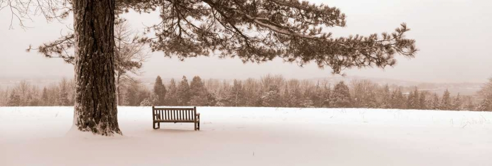 First Snow II Sleeper, Mike 11168