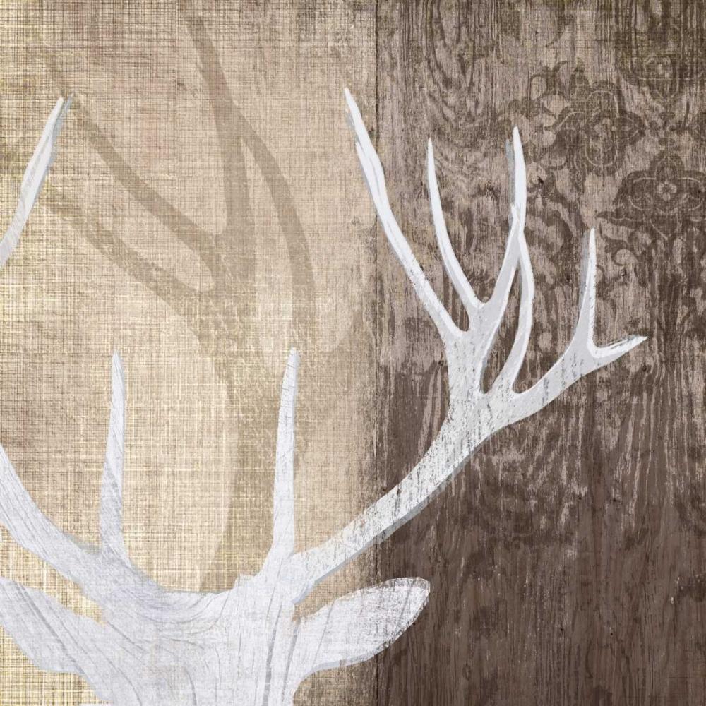 Deer Lodge II Venter, Tandi 12339