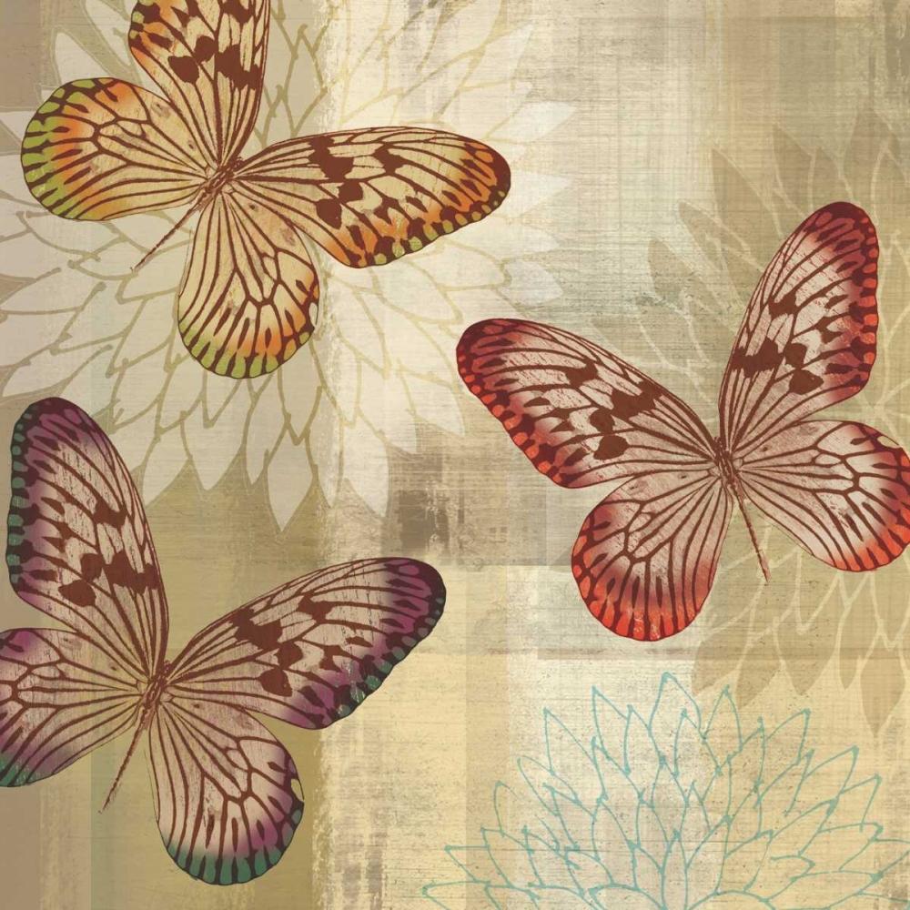 Tropical Butterflies I Venter, Tandi 36239