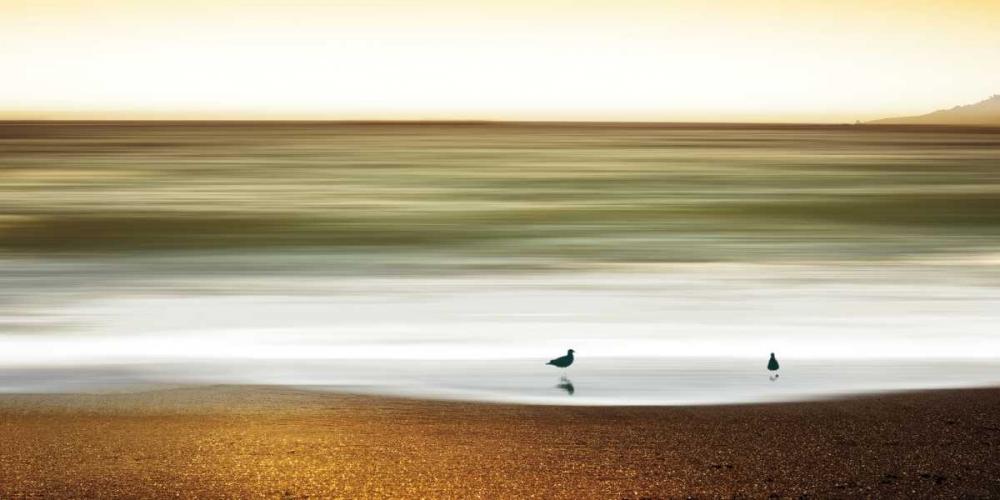 Golden Shores Pelkey, Marvin 36355