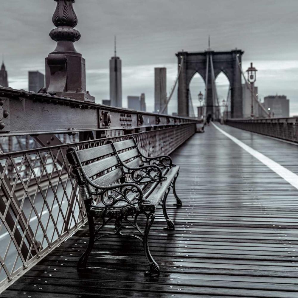 Bridge Beauty Frank, Assaf 59885