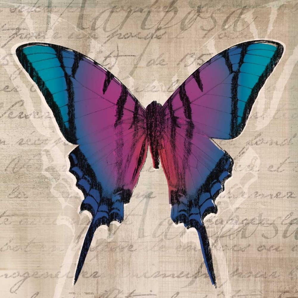 Butterflies IV Venter, Tandi 36455