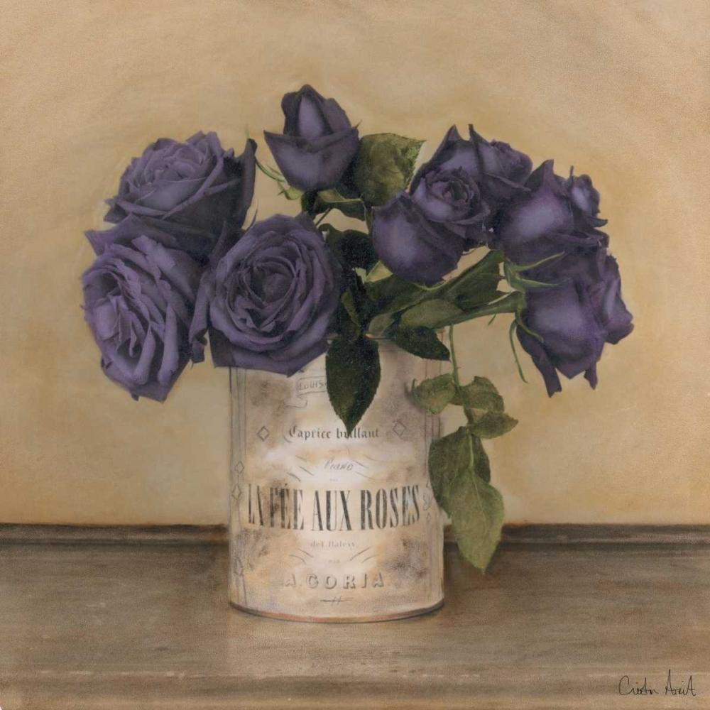 Royal Roses Atria, Cristin 36490