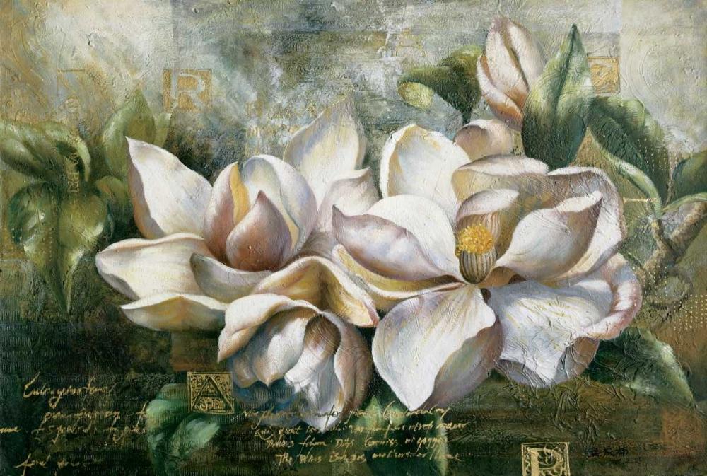Dawning Magnolias Meng 12432