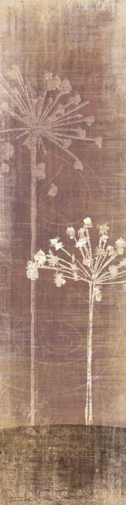 Buon Fresco I Venter, Tandi 12461