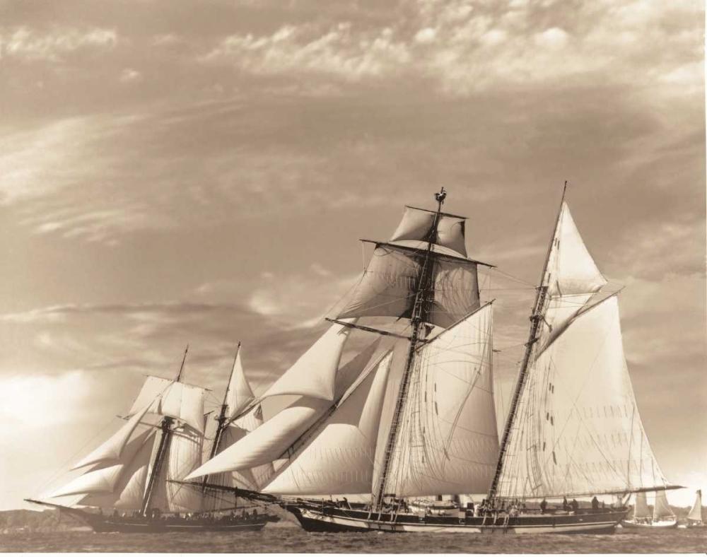 Maiden Voyage II Stevens, David 11622