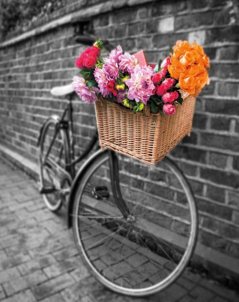 Basket of Flowers II Frank, Assaf 36604