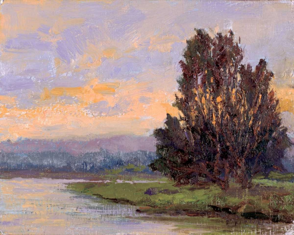 Jewels of the Wetlands Series One Curt, Brigitte 11826