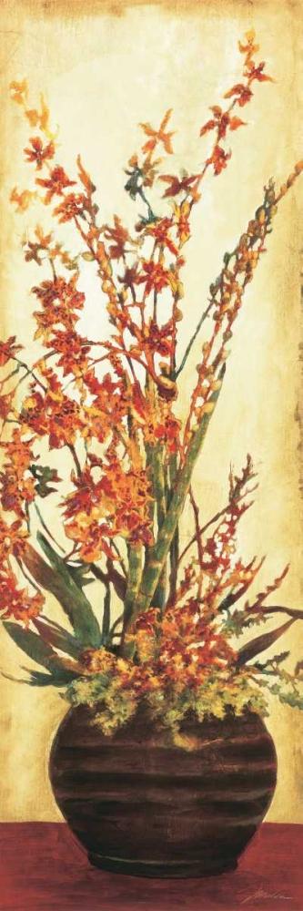 Zen Beauties II Jardine, Liz 11335