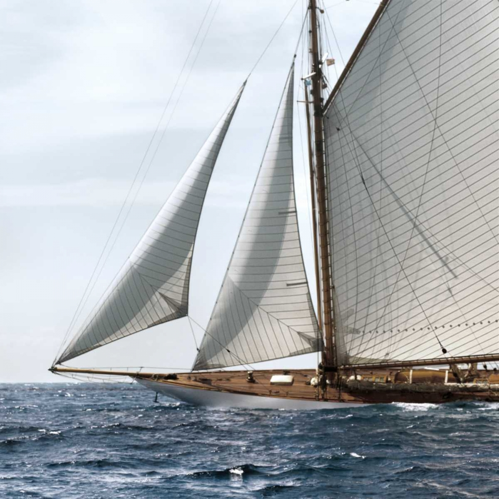 Sailing South Llovet, Jorge 36761