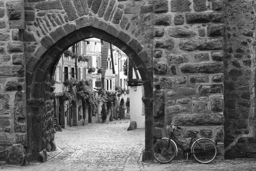 Bicycle of Riquewihr Nagler, Monte 36834