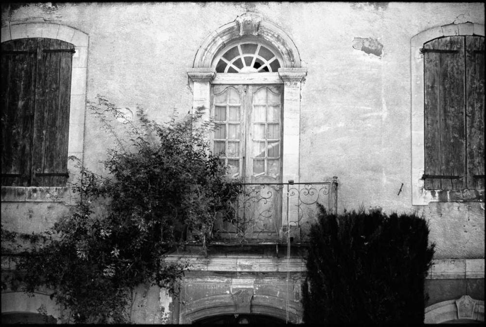 Provence OMara, James 11523