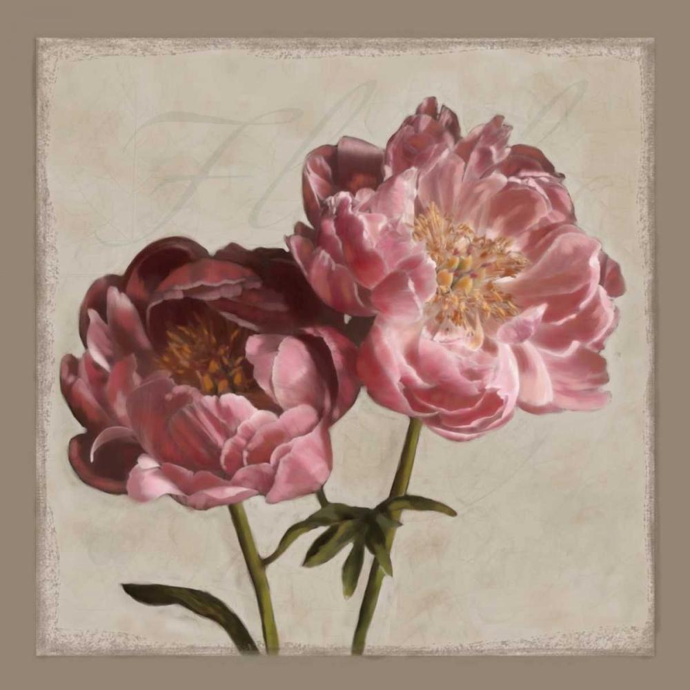 Botanical Peony Pahl, Janel 12868