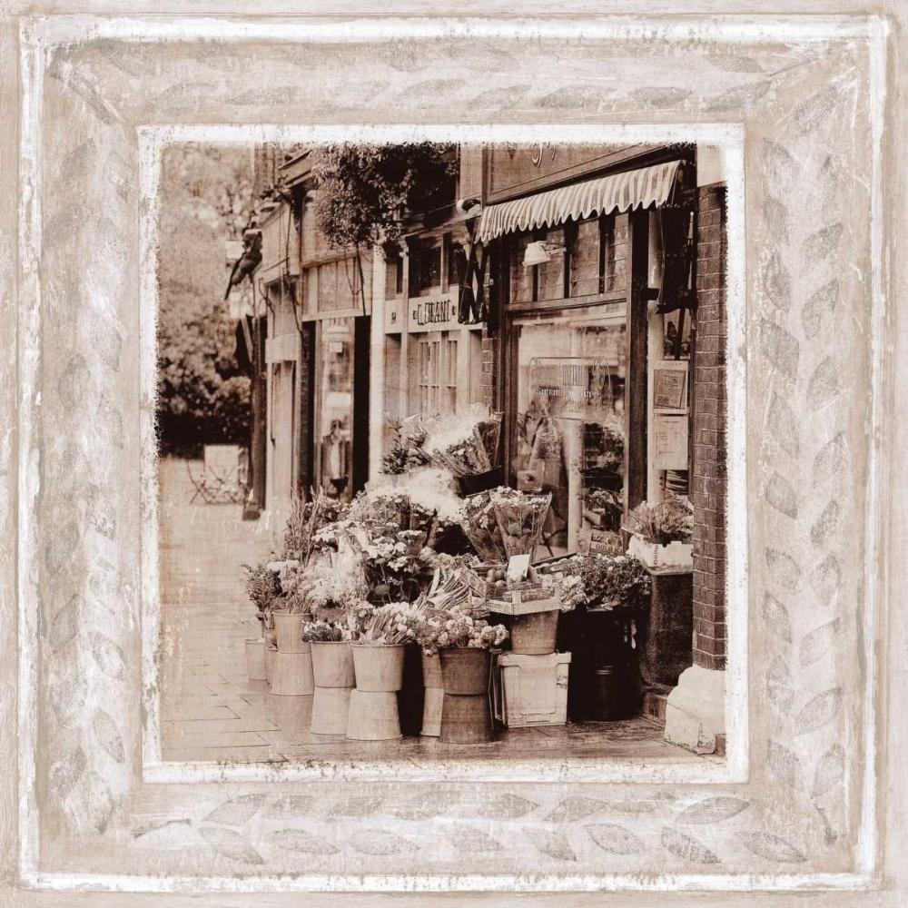 Flower Market Tarras, Teo 11942