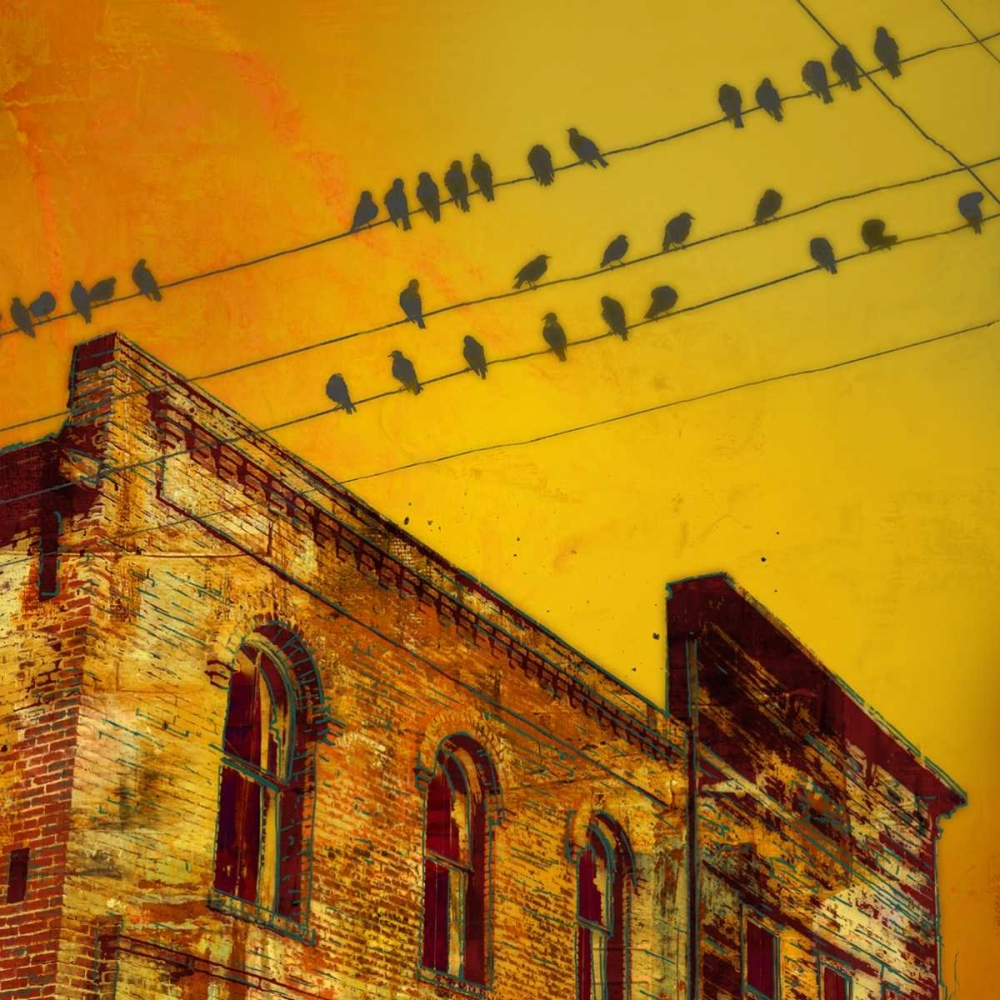 Birds on a Wire I McMasters, James 79234