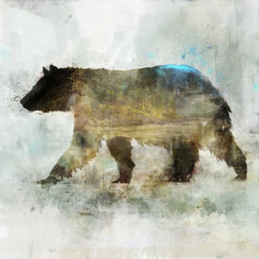 Journey Bear II Roko, Ken 126601
