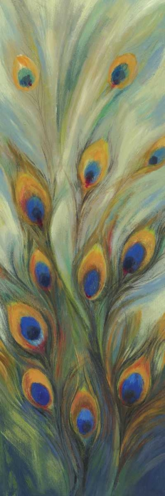Peacock Tale PI Studio 79602