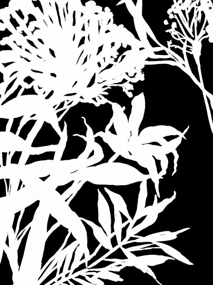 Monochrome Foliage III PI Studio 150789