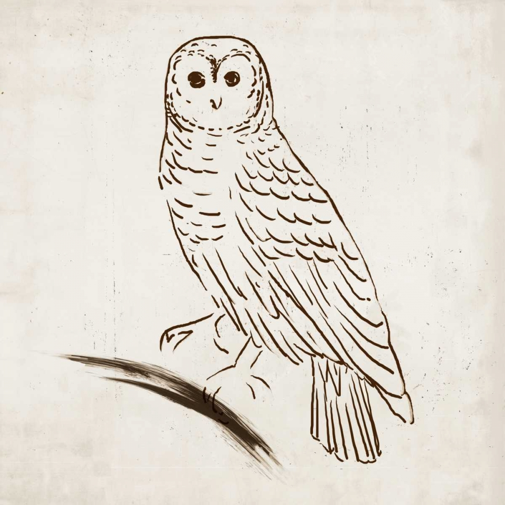 Owl I Reeves, Tom 78899