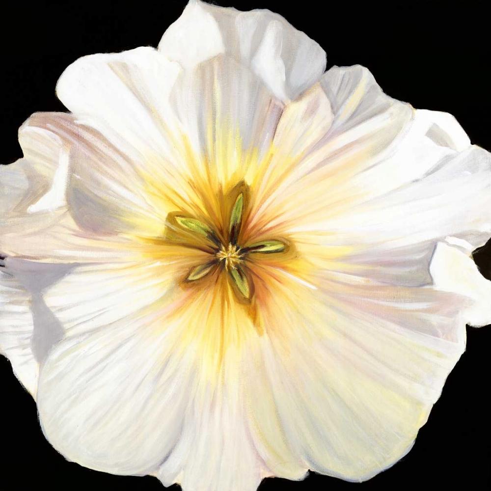 White Bloom I Lafrate, Sandra 126641