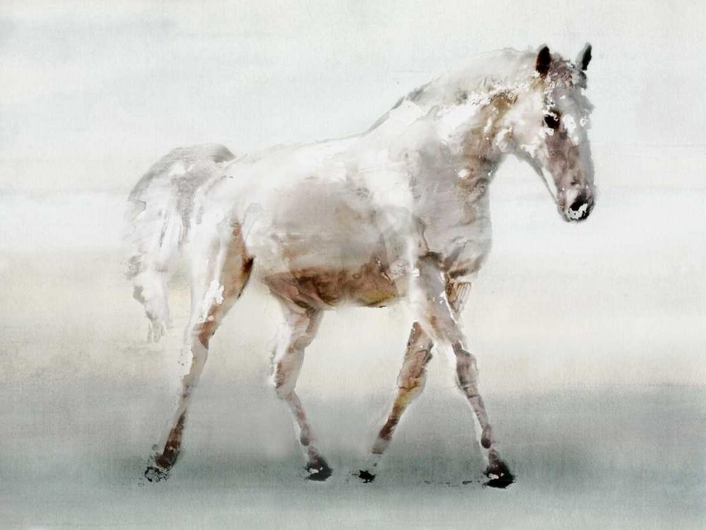 White Horse Selkirk, Edward 107729