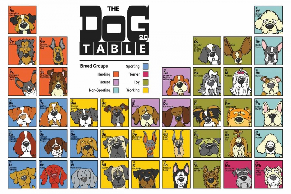 The Dog Table Angry Squirrel Studio 32652