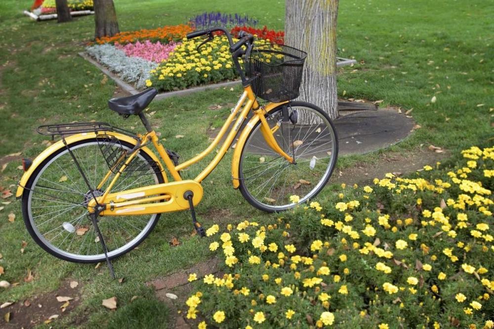Japan Bicycle - 1 Blaustein, Alan 82083