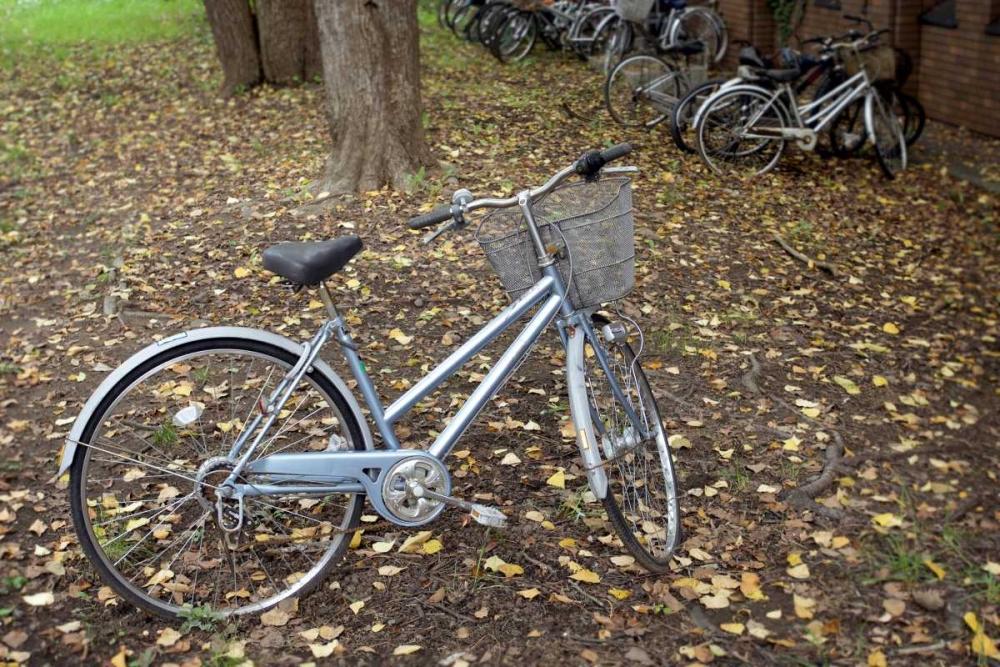Japan Bicycle - 10 Blaustein, Alan 82084