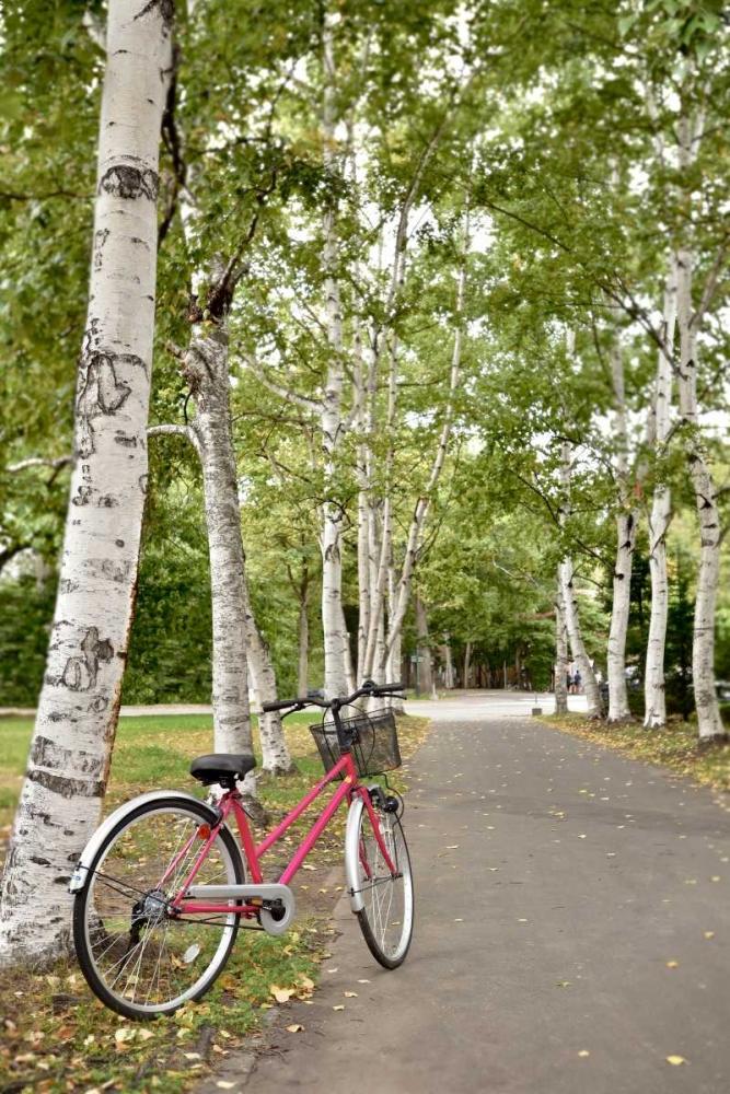 Japan Bicycle - 20 Blaustein, Alan 82095