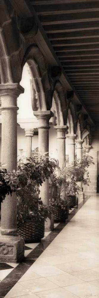 Palacio de Valdespino Blaustein, Alan 14732
