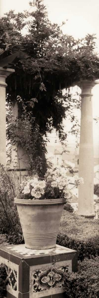 Jardin Botanico Blaustein, Alan 14692