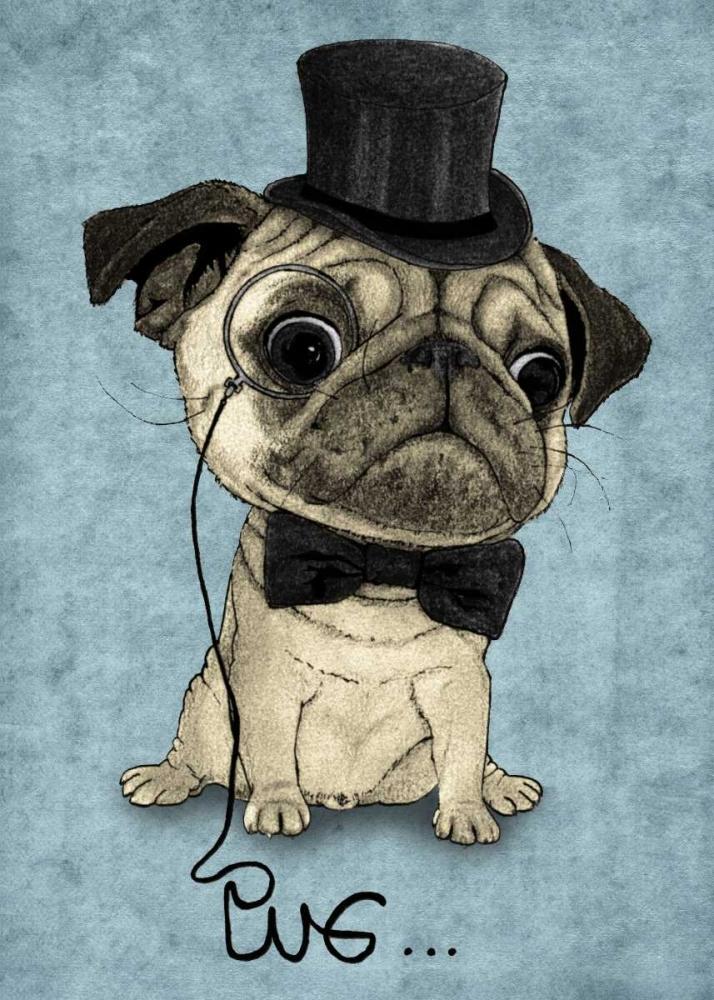 Gentle Pug Barruf 107204
