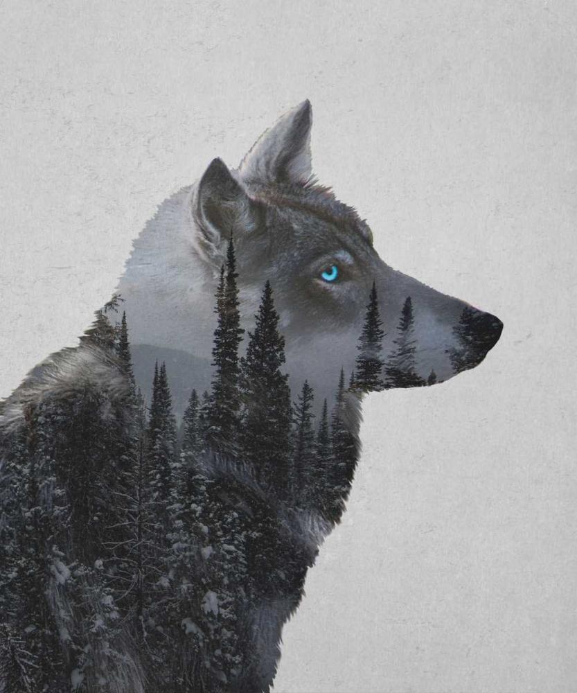 Winter Wolf Davies Babies 151282