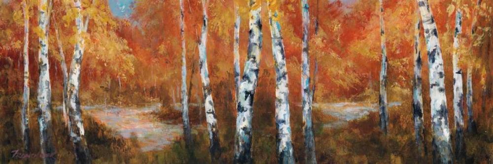 Autumn Birch II Fronckowiak, Art 13529